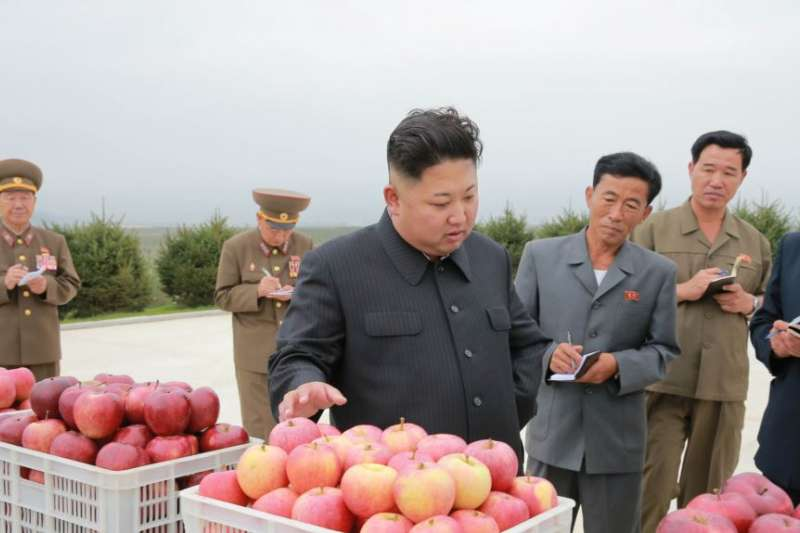北韓領導人金正恩視察一座果園。