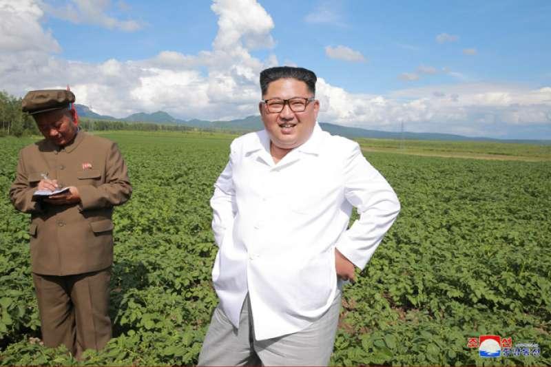 龐畢歐訪北韓期間,金正恩似乎刻意下鄉察看馬鈴薯田。(取自朝中社)