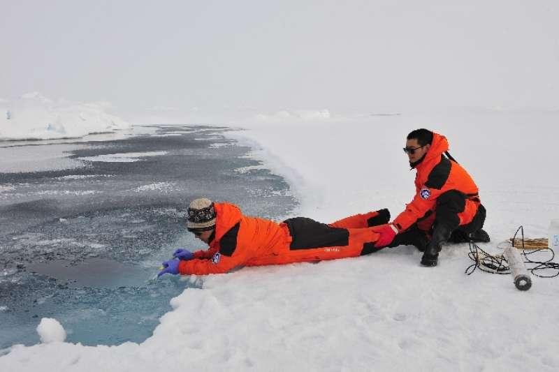 北極冰上融池採樣(新華社)