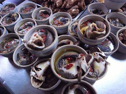 裝著清燉鯰魚的炖露。(圖/彰化小食記@facebook)