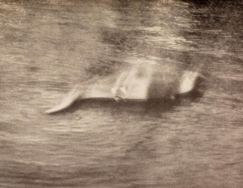 尼斯湖,尼斯湖水怪。(維基百科公有領域)