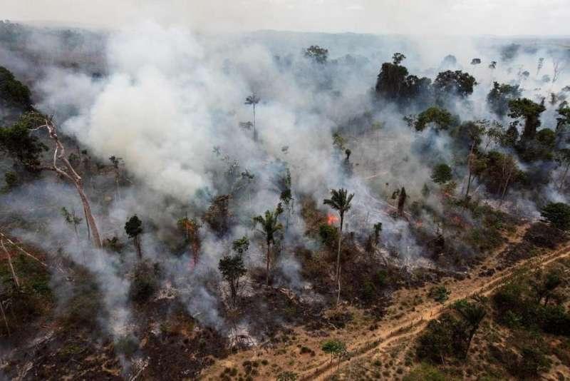 巴西總統特梅爾欲通過雨林開發案遭法院擋下,爭議中的雨林保護區曾遭人縱火。(美聯社)