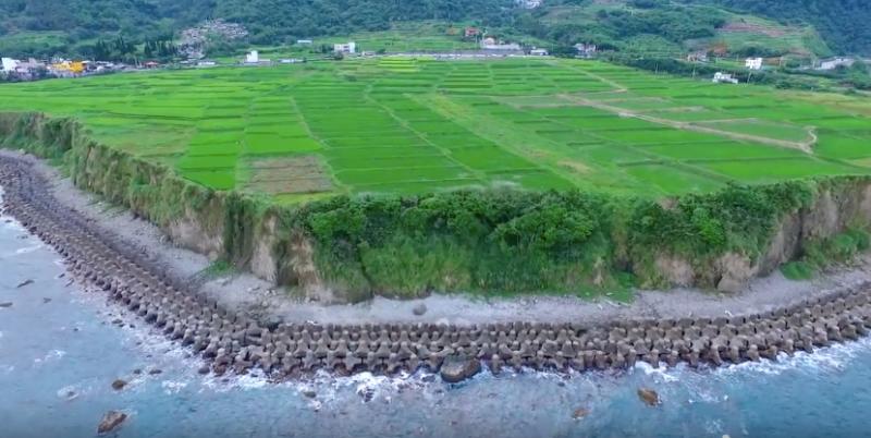 海岸山脈翠峰相連壯麗秀偉與綠油油的水稻田,構成這一座美麗的城市-花蓮。(圖/YouTube新社梯田空拍)