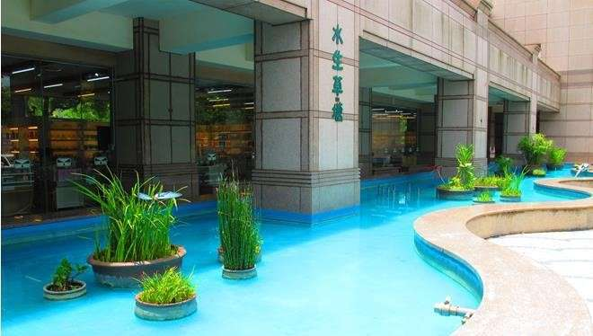 在樂活廣場的兩側塑造了水生草塘,以自然生態池的概念,種植台灣常見的水生植物,塑造一個充滿鄉村意象且具自然生態教育意義的水景設施。(圖/西湖服務區)