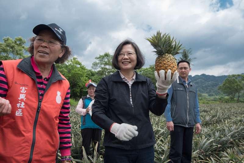 2018年3月31日,蔡英文總統參訪花蓮瑞穗富源鳳梨公園(總統府)