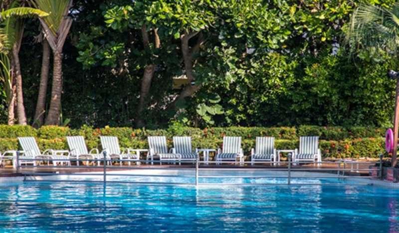 椰林泳池。(圖/HotelsCombined提供)