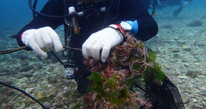 綠島百人淨海 海底清垃圾寶特瓶占最多