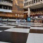 請問您是否贊成台北車站大廳開放民眾席地而坐?
