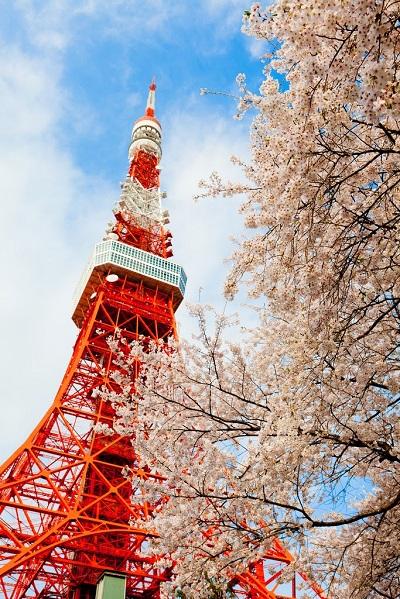 東京鐵塔也是東京絕美景點之一。(圖/ Chris Chan @Flickr)