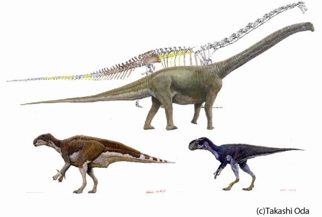 上方即丹波龍,下方兩隻恐龍也是在丹波出圖的恐龍化石還原圖。