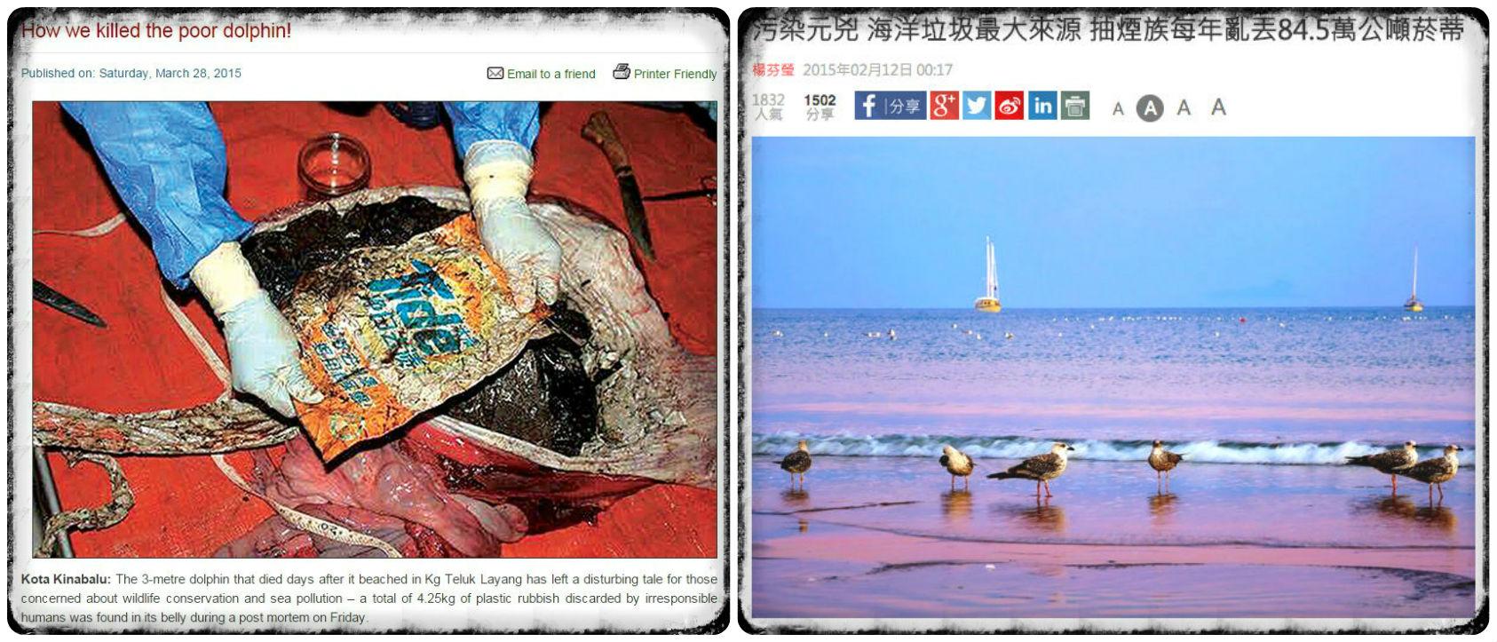 相關報導:污染元兇 海洋垃圾最大來源 抽煙族每年亂丟84.5萬公噸菸蒂 http://bit.ly/1Ddi9z1:How we killed the poor dolphin! http://goo.gl/MDSU1Q