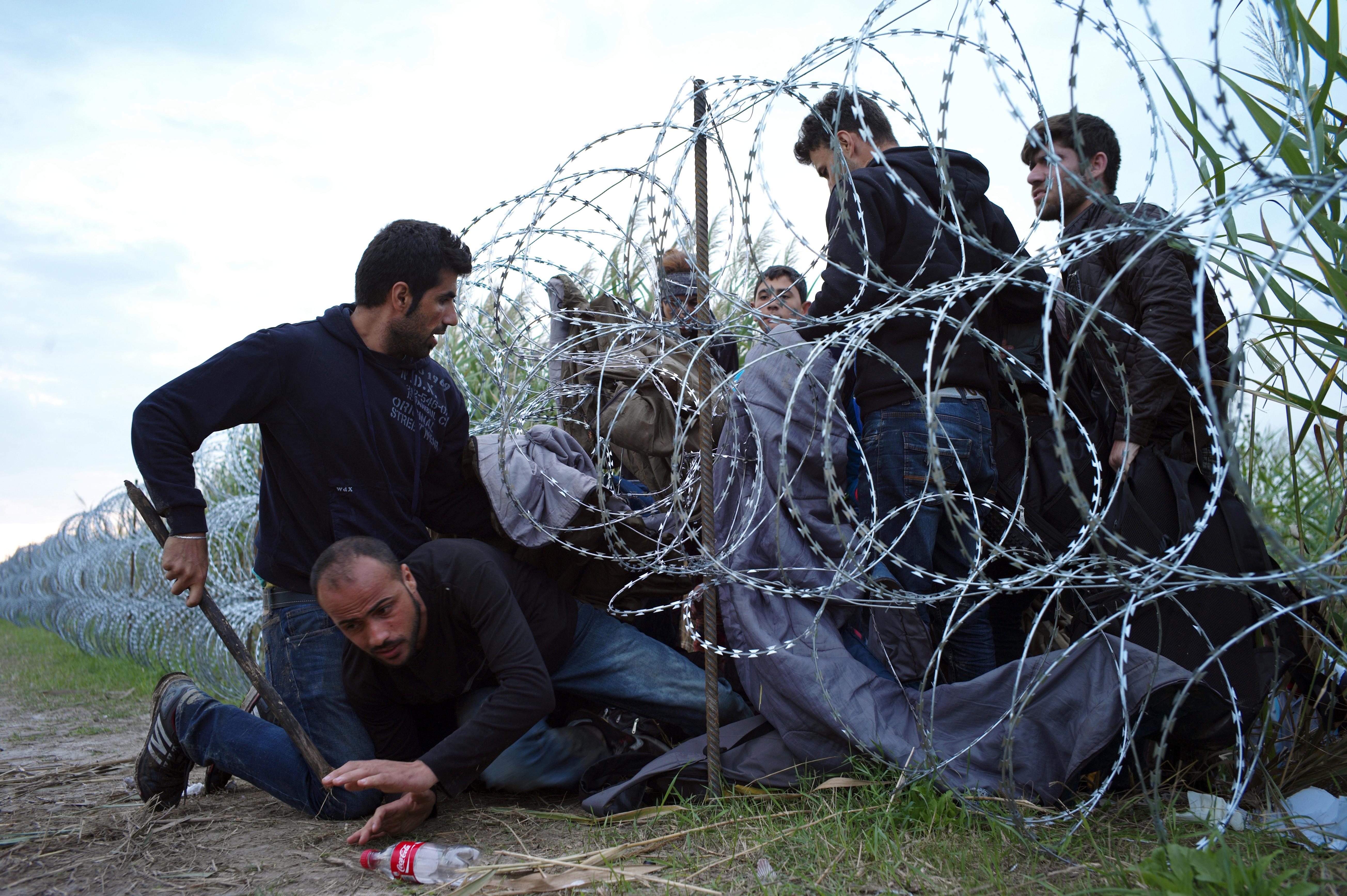 塞爾維亞邊界的敘利亞移民闖越鐵絲網,進入匈牙利(美聯社)