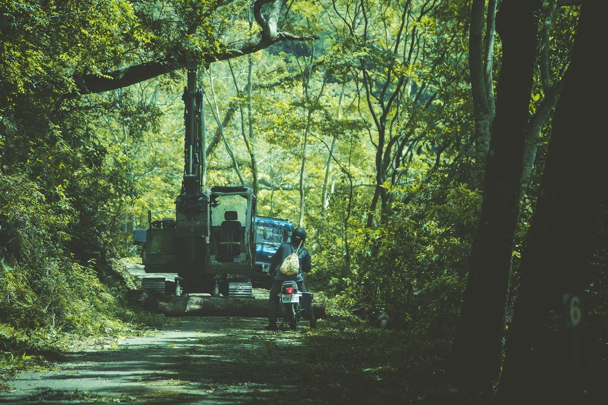 森林護管員的工作項目相當龐雜,當面對一大片枯立木、風倒木、雜草藤蔓橫生的次生林,獨自穿梭其間的護管員每一步仍走得萬分小心。(圖/謝昇佑攝)