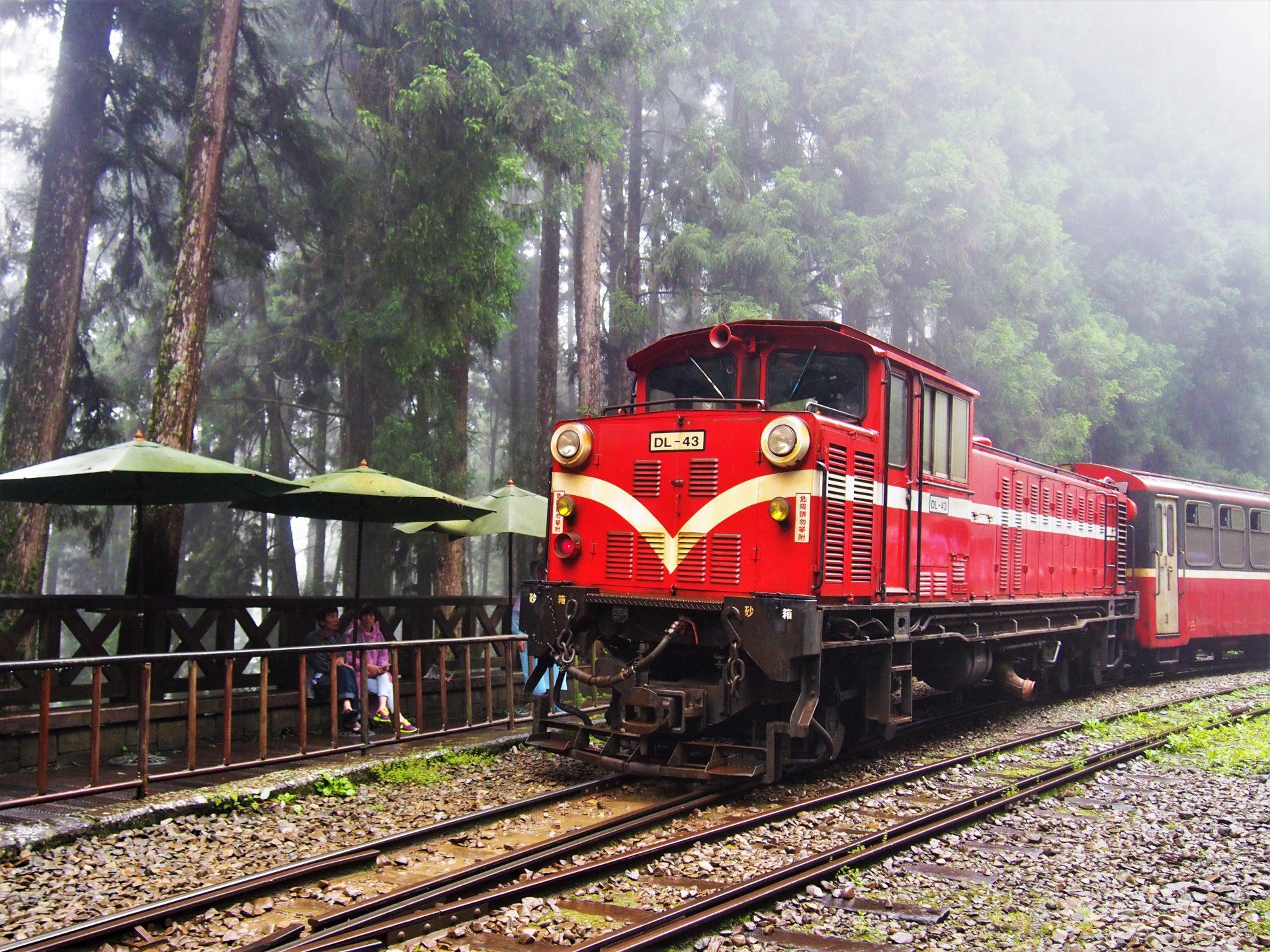 2021春節連假玩法推薦-阿里山小火車。 (圖/Tripbaa趣吧!自由行專家)