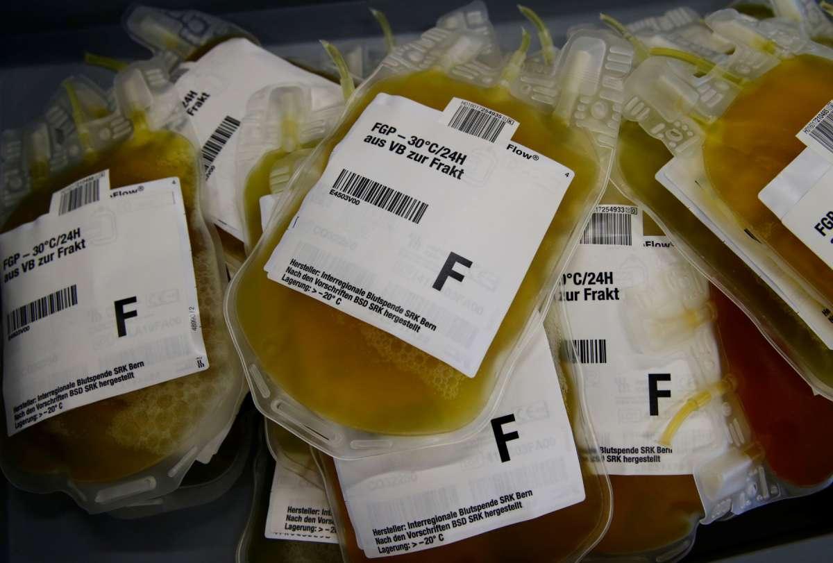在美、德國捐血竟可賺錢?義大利還放有薪假?揭密全球「巨大血漿生意」,難怪大國肯給錢