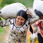 一杯咖啡的時間改變世界:The Lightened 直接貿易咖啡