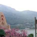 中國山東招募557名島主 任期最長50年
