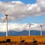 杜紫宸觀點:蔡政府應以產業角度解決能源不足問題