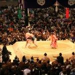 「相撲離」現象,日本相撲未來引人憂