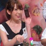 老外看波多野結衣爭議:為什麼不找台灣自己的女優?