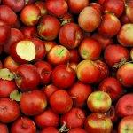 一天一蘋果,遠離你的人其實不是醫生而是...