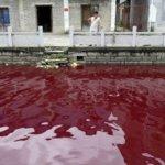 中國水污染 逾60%地下水人類不宜接觸