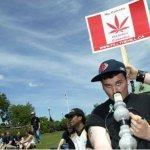 加拿大裁決 醫療用大麻全面「合法化」
