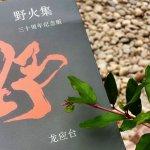 龍應台專文:救生艇裏放聲唱歌──給香港的九十後