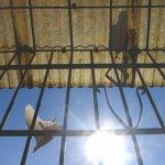 鐵窗後的漫長回家路之二:四度入獄當蒐集勳章,「我是世界最愚蠢黑道」