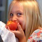 素食旅客出國必備!3大國外素食餐廳搜尋網站