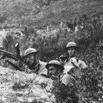 「證據不足」三菱拒向加拿大戰俘致歉