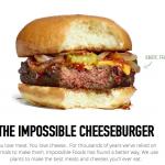 全素起司漢堡 連Google都想要的科技