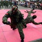 國軍夏日飛行嘉年華 戰技表演撼動人心