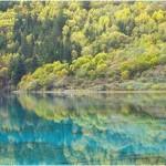 「魚在天上游,鳥在水中飛」精選3個九寨溝最適合夏天去的景區