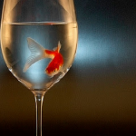 莊永明專文(下):杯酒泯仇 傳唱心曲