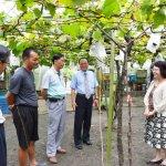 台灣農業亟需生力軍 行政院:10年吸引3萬青年務農