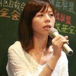 洪慈庸:國民黨立委不符社會期待 才會有太陽花出現