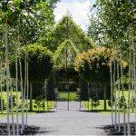 紐西蘭大叔花了4年,「種」出一座會呼吸長大的樹教堂