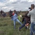 對難民又踢又踹又絆 匈牙利邪惡女記者遭電視台開除