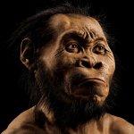 大發現!人類有了新的遠祖「納雷迪人」驗明正身