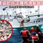台漁船非法割魚翅 漁獲赫見瀕危鯊魚