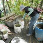 6招防疫除孑孓 清除積水容器才是根本