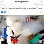 「蚊」名世界!登革熱疫情發燒 登上《紐約時報》