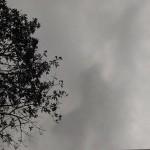 杜鵑颱風周日接近台灣 氣象局:北部民眾可提早一天賞月