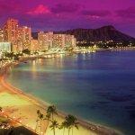 張冬凝觀點:夏威夷的政府想向遊民說再見