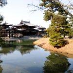 飄散抹茶香味的故鄉,來到日本宇治你還可以這樣玩