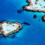 垃圾島變生態樂園 澳洲佬的島主夢
