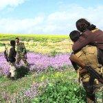 自己的同胞自己救!不畏恐怖伊斯蘭國 伊拉克律師英勇救出500餘名遭綁女性