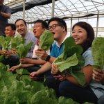 朱立倫訪雲林談農業改革:要讓全國每一家庭都吃有機蔬菜
