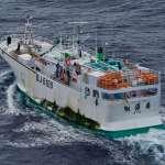 台漁船非法捕鯊列黃牌警告 若未改善漁產將禁運歐盟